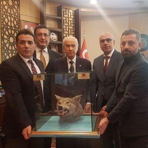 BAHÇELİ'YE 'DOLDURULMUŞ KURT KAFASI' HEDİYESİ