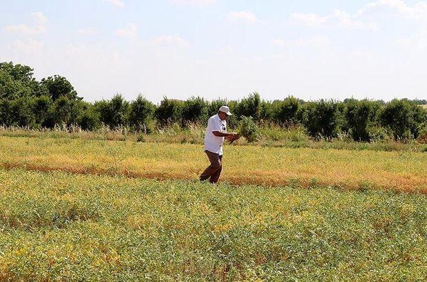 teknolojik tarım