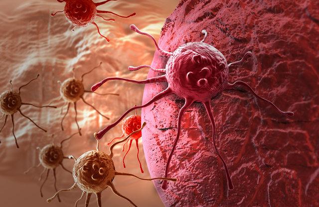 Beynin önemli gıdaları: Dondurma, pekmez, hurma ve incir