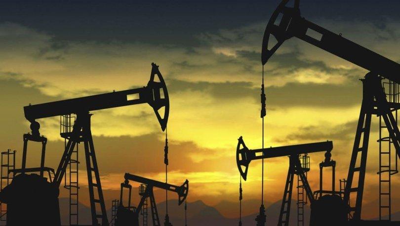 TPAO'ya petrol arama ruhsatı