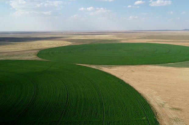 Tarıma teşvik son 20 yılın en düşük seviyesinde
