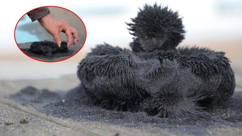 Manyetik siyah kum