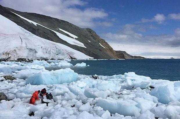 Antarktika kayaçları