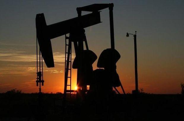 Maduro Venezuela OPEC Petrol