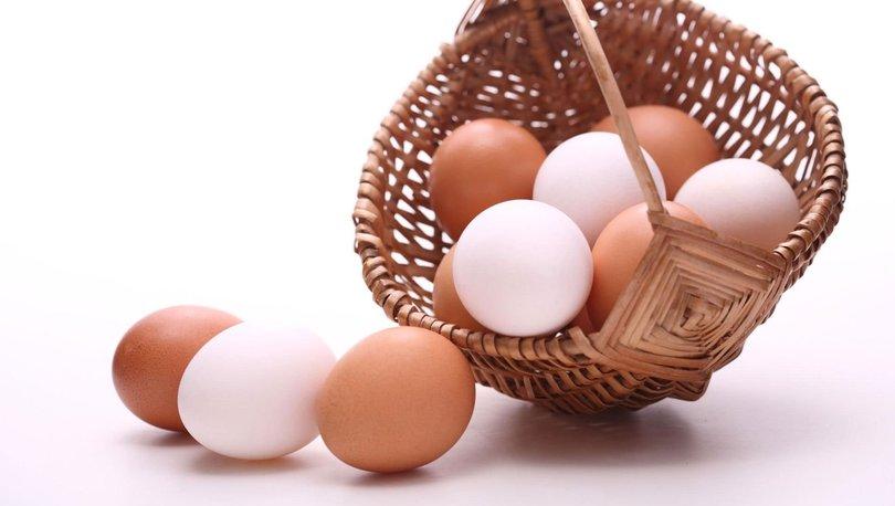 Tavuk yumurtası üretimi
