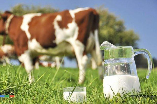 Toplanan inek sütü Aralık'ta azaldı