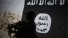 150'den fazla IŞİD üyesi ve aileleri 10 kamyonluk konvoyla Suriye'den Irak'a gönderildi