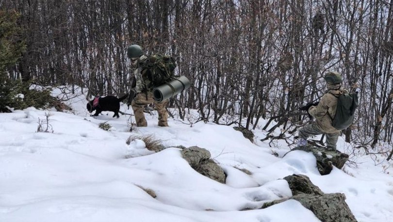 Bitlis'te terör operasyonu!