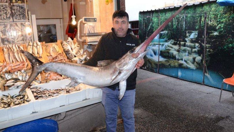 Dev kılıç balığı 2 bin 800 liradan satıldı!