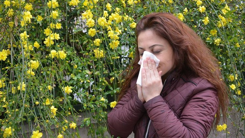 Meteoroloji polen