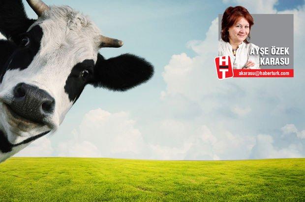 Twitter'a açılan inek davasında kim haklı?
