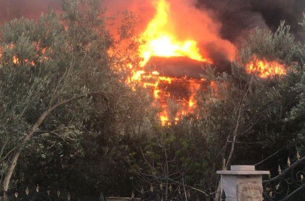 Asos'ta korkutan yangın!