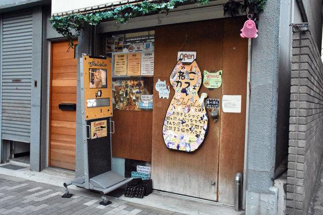 """Japonya'nın eğlenceli mekanları """"hayvan kafeler"""""""