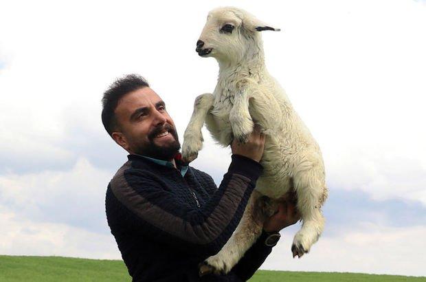 Çoban kardeşler