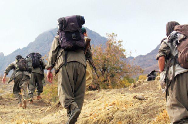 Suruç'ta, PKK/PYD'li terörist yakalandı
