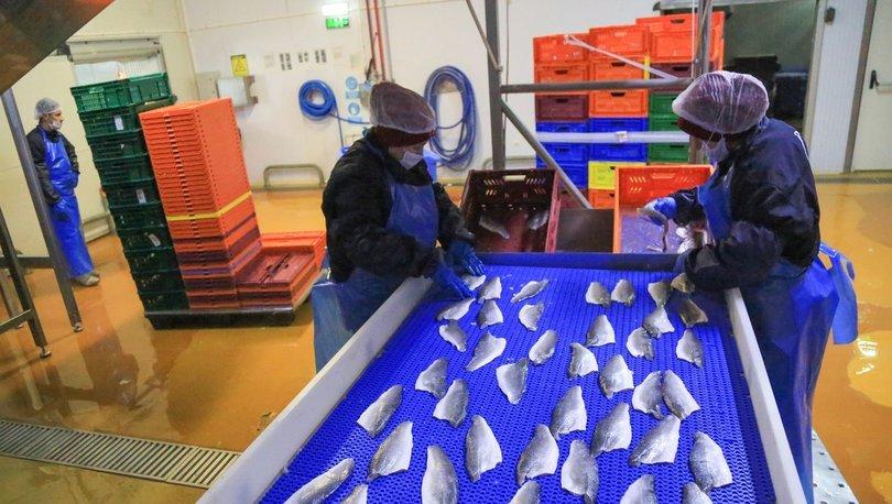 Su ürünleri ihracatı