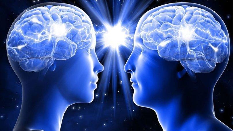 Erkek beyni