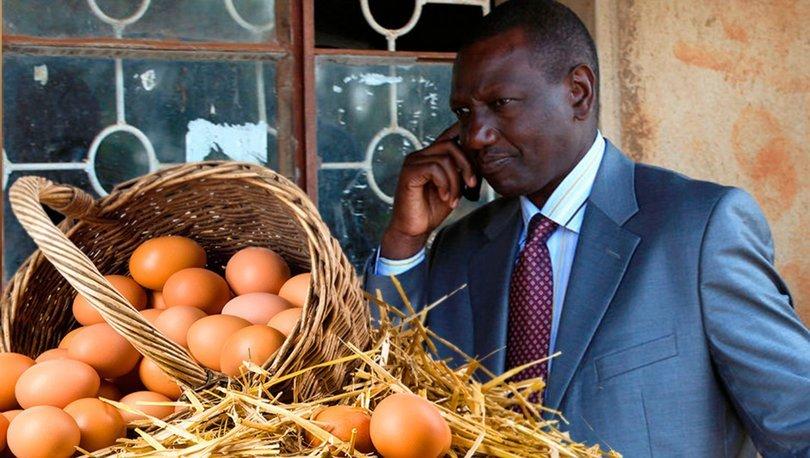 yumurta hırsızlığı
