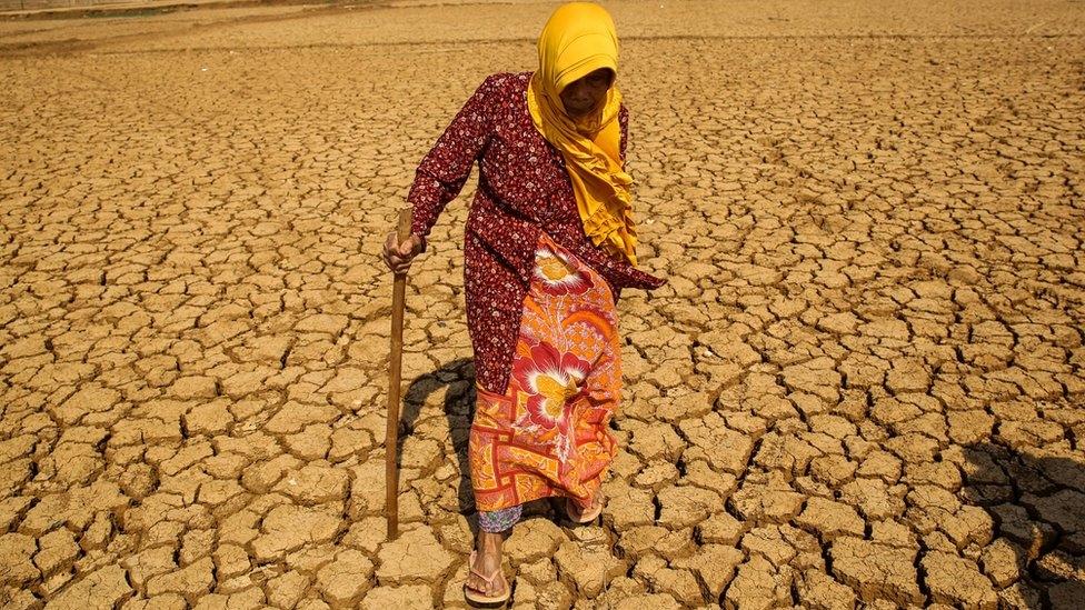 Картинки по запросу глобальное потепление