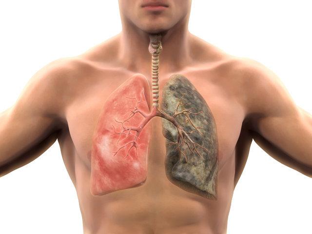 Sigarayı hangi yaşta bırakırsanız ne kadar yaşarsınız?