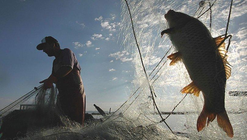 balık av yasağı