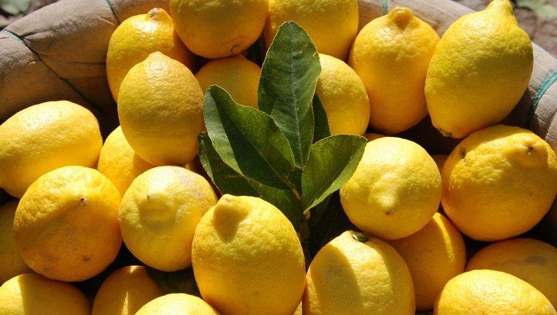 TZOB Genel Başkanı Bayraktar: Ramazan'ın şam şampiyonu limon