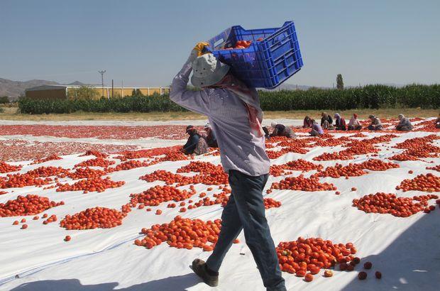 Mevsimlik işçilerde kıdem tazminatı şartları neler?