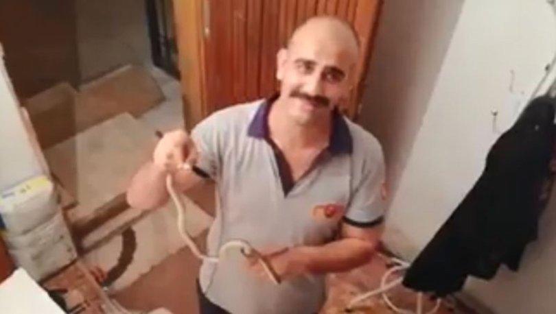Zonguldak'ta evi basan yılanlar yakalanarak doğal ortama bırakıldı