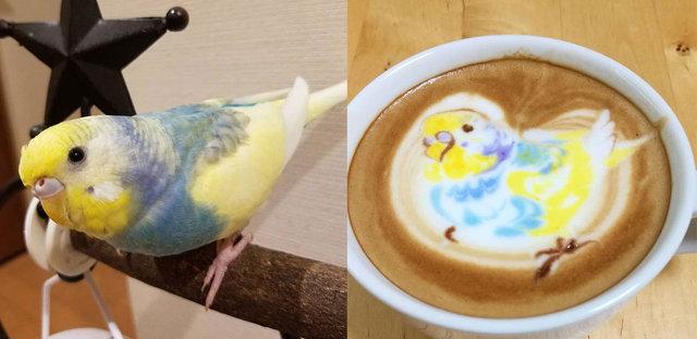 Kahve değil sanat eseri! Köpükten kuş çiziyor