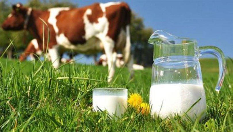 süt ve süt ürünleri üretimi istatistikleri
