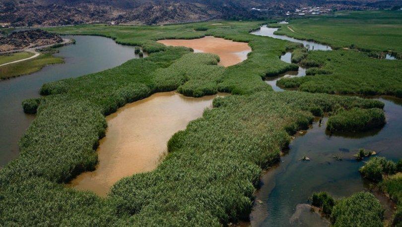 Ağrı Dağı Milli Parkı