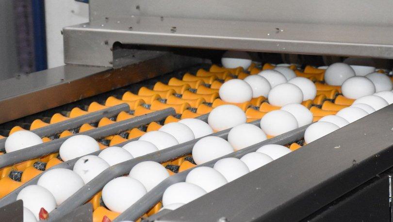 Yumurta üreticileri destek