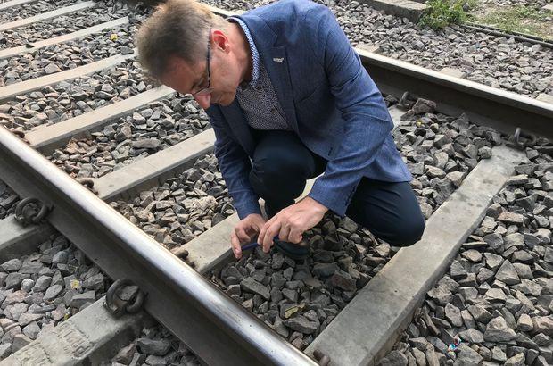 32 binden fazla hayvan demir yolu kazalarında öldü
