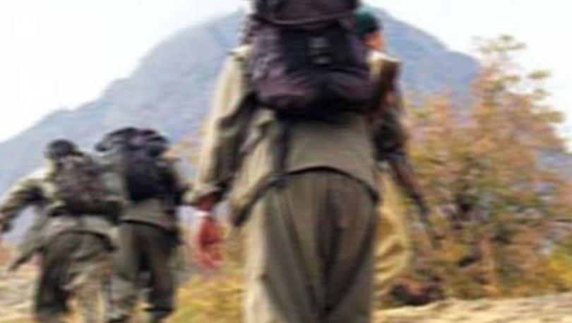 Teslim olan PKK'lı: Teröristler arasında güven sorunu had safhaya ulaştı