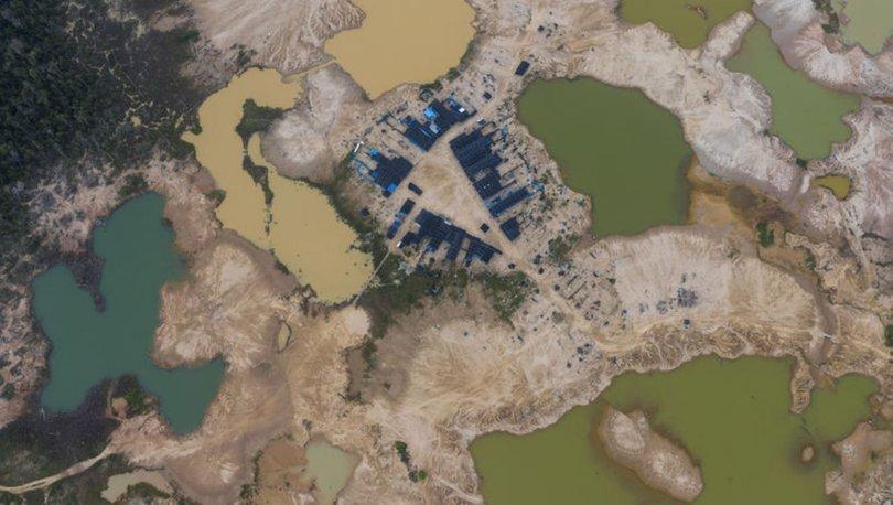SON DAKİKA! Dünya görmezden geliyor! Amazonlar'daki orman tahribatı artıyor!