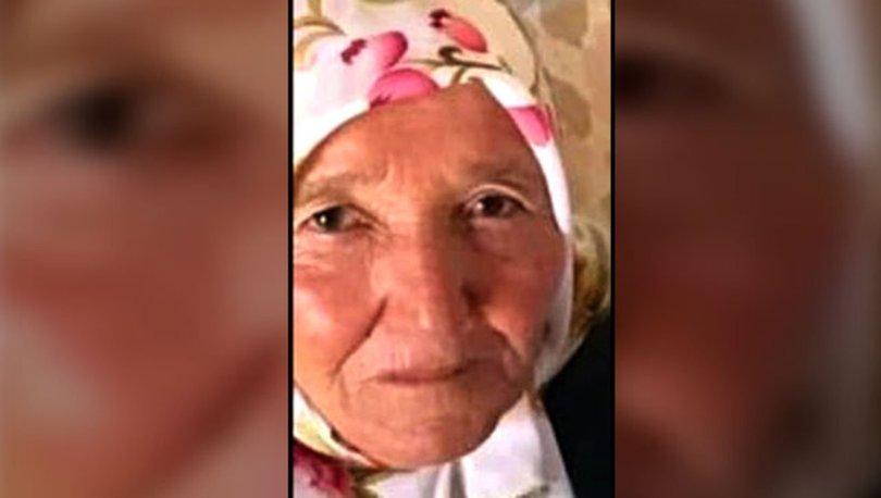Mantar toplamaya çıkan yaşlı kadın kayboldu
