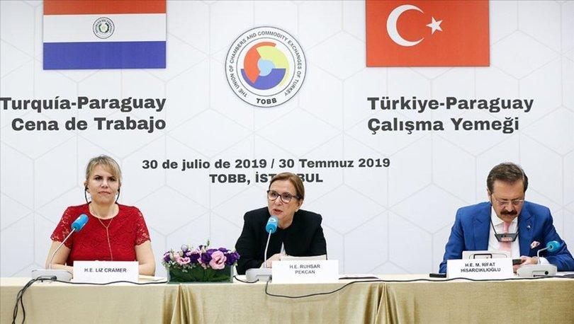 Paraguay ile Ticaret