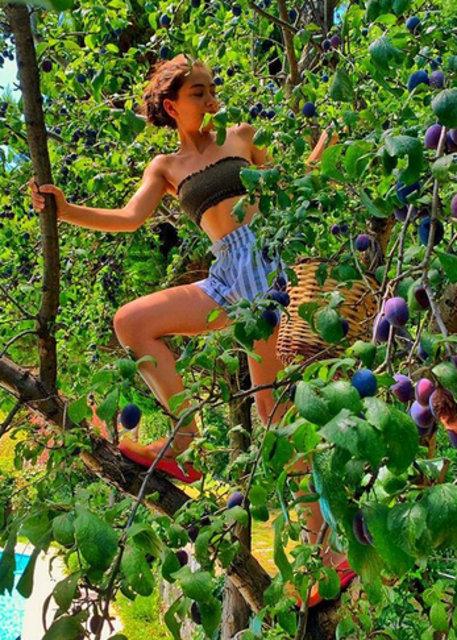 Neslihan Atagül böyle meyve topladı - Magazin haberleri
