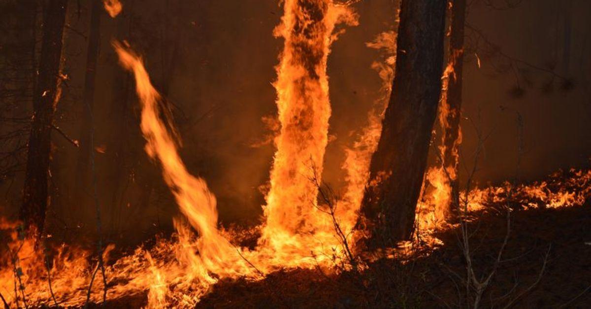 Eskişehir'de de yangın terörü!