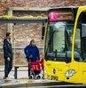 Hollanda'nin Utrecht sehrinde sehir içi otobüs duraklarinin üstleri yesillendirildi