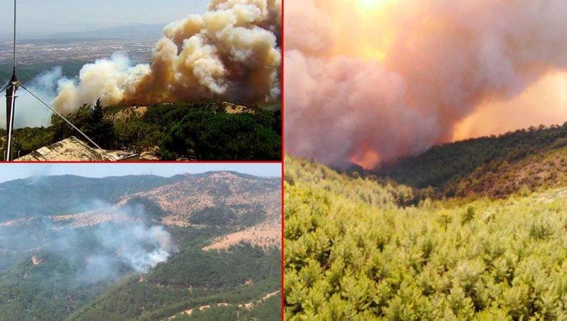 Son dakika! İzmir ve Muğla'da korkutan yangınlar! Bakan Pakdemirli'den açıklama! İşte son durum
