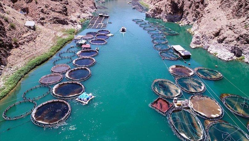 Su ürünleri üretimi