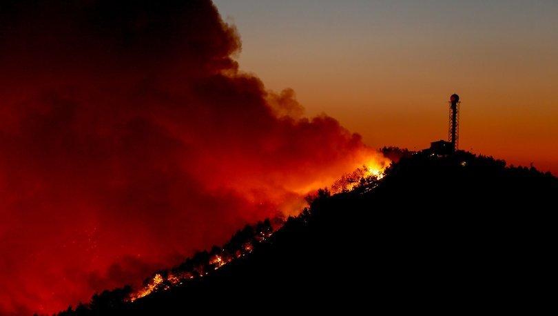 Son dakika İzmir'den haber! Orman yangınında üçüncü gün! Söndürülemiyor