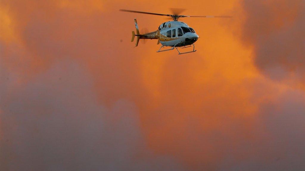 Orman yangınlarında yönetim kargaşası var