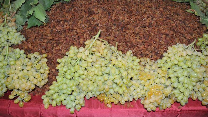 Pakdemirli'den kuru üzüm fiyatı açıklaması