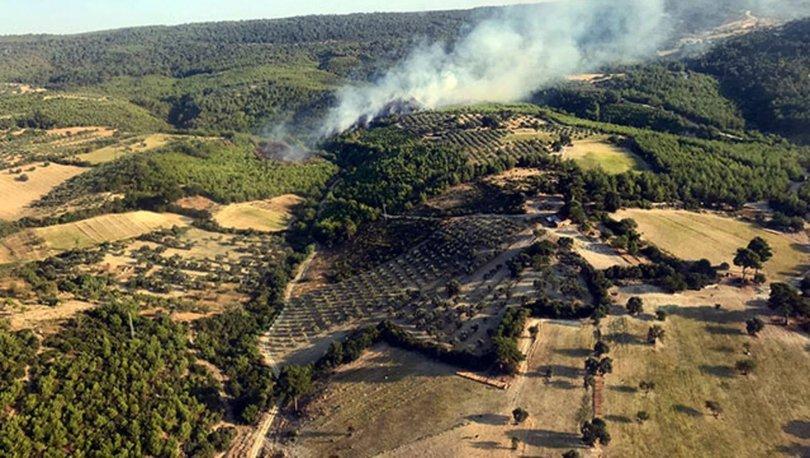 SON DAKİKA: Bergama'da orman yangını