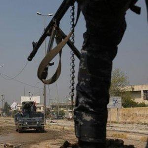 Irak'ta bomba yüklü ineklerle terör saldırısı