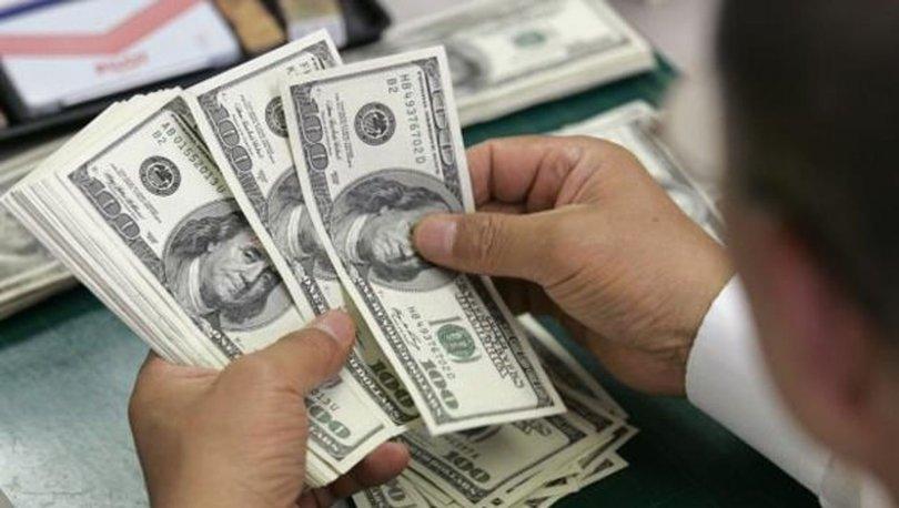 Finansal kesim dışındaki firmaların net döviz açığı
