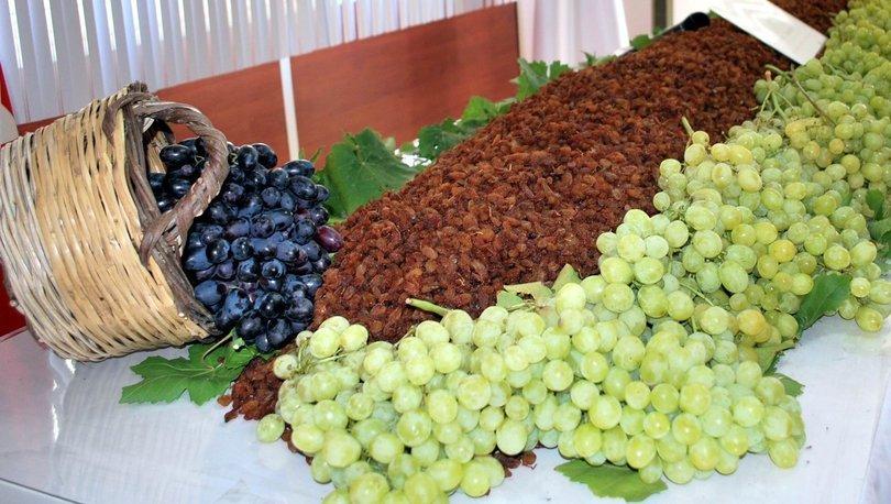 kuru üzüm alımları