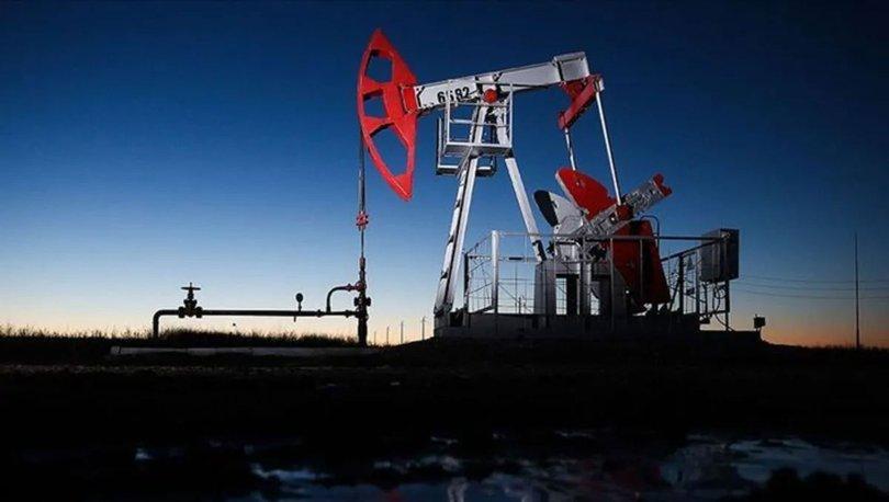 OPEC'in ham petrol üretimi